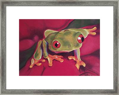 Red-eyed Tree Frog On Red Foliage Framed Print