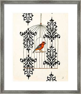 Red Finch Framed Print