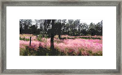 Red Fire Grass Field Gulf Coast Florida Framed Print