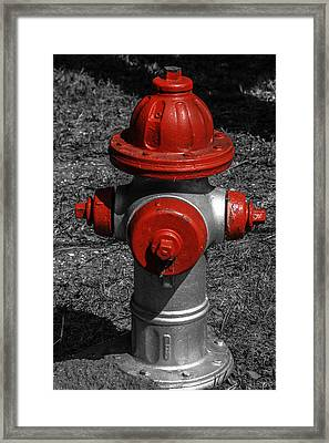 Red Fire Hydrant Framed Print by Steven  Taylor