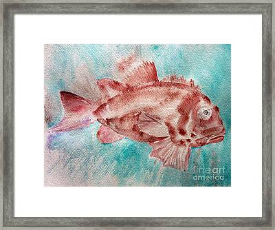 Red Fish Framed Print by Jasna Dragun