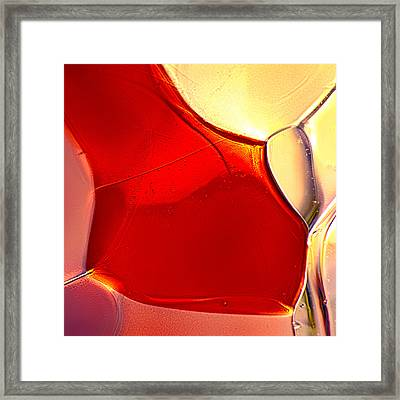 Red Fish Framed Print by Omaste Witkowski