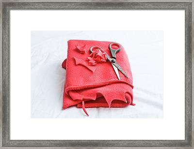 Red Fleece Framed Print by Tom Gowanlock