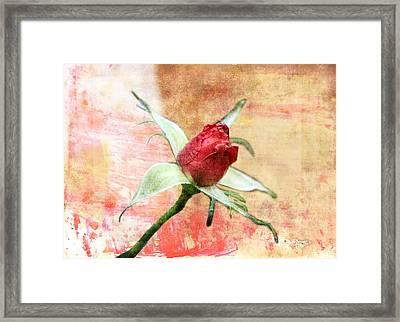 Framed Print featuring the digital art Red Flower 1 by Helene U Taylor