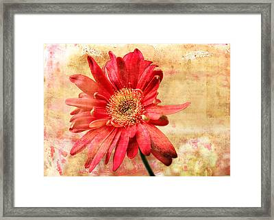 Framed Print featuring the digital art Red Flower 2 by Helene U Taylor
