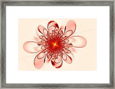 Single Red Flower Framed Print