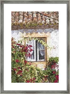 Red Flower Window Framed Print by David Letts