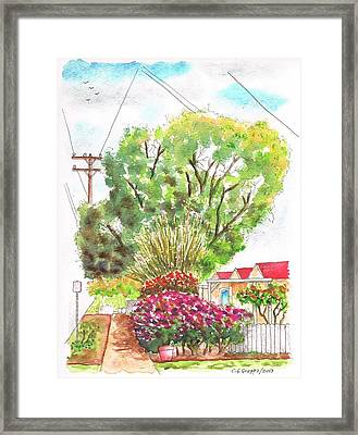 Red Flowers And A Tree In Santa Paula - California Framed Print