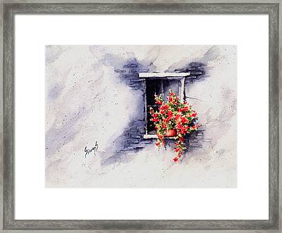 Red Flowers Framed Print by Sam Sidders
