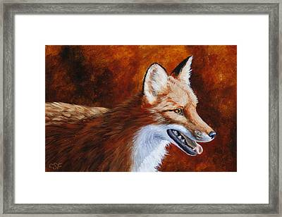 Red Fox - A Warm Day Framed Print by Crista Forest