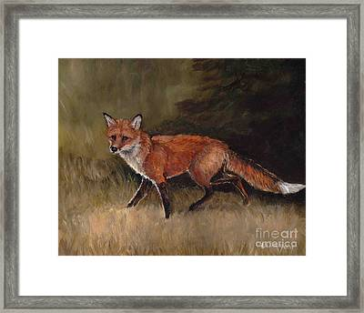 Red Fox Framed Print by Charlotte Yealey