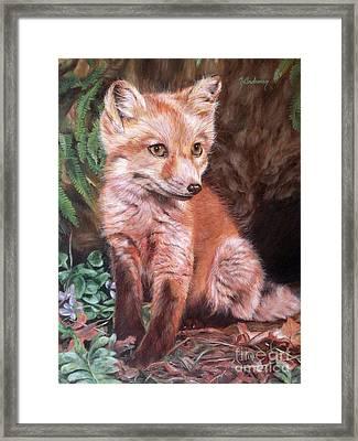 Red Fox Kit Framed Print by Nancy Andresen