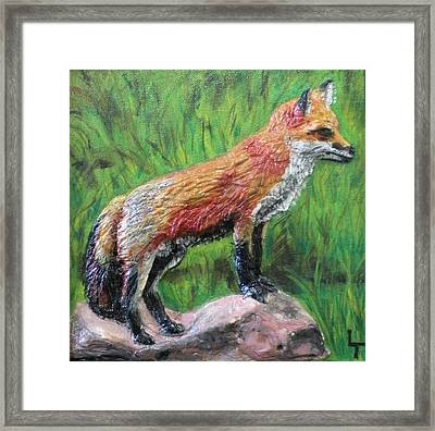 Red Fox Framed Print by Lorrie T Dunks