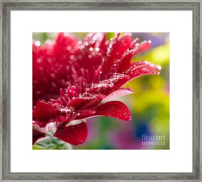 Red Gerbera  Flower Framed Print by Boon Mee