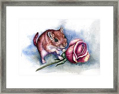 Red Gerbil  Framed Print by Karen Wheeler
