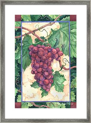Red Grapes Framed Print by Paul Brent
