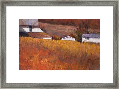 Red Grass Framed Print by Beverly Amundson