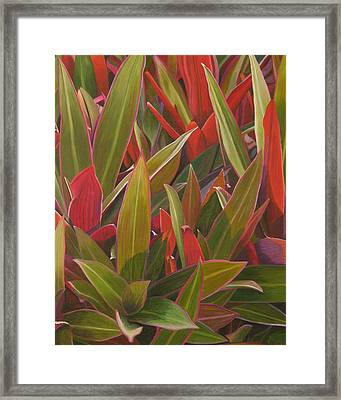 Red Green And Purple Framed Print