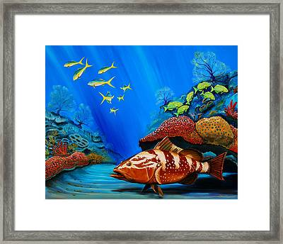 Red Grouper Framed Print