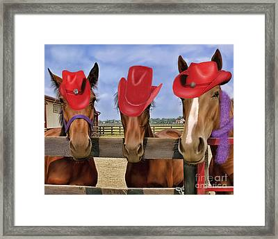 Red Hat Ladies Framed Print