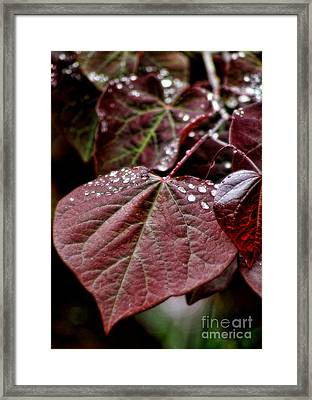 Framed Print featuring the photograph Red Heart by Peggy Hughes