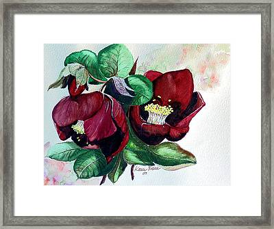 Red Helleborous Framed Print by Karin  Dawn Kelshall- Best