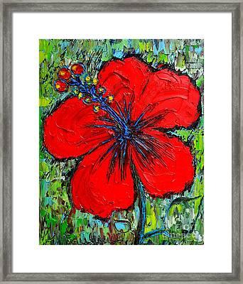 Red Hibiscus Framed Print by Ana Maria Edulescu