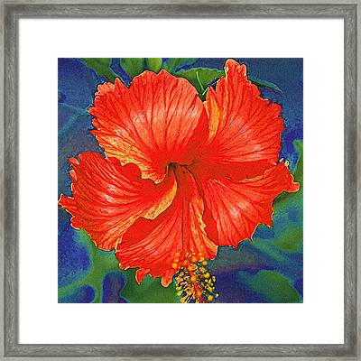 Red Hibiscus Flower Framed Print