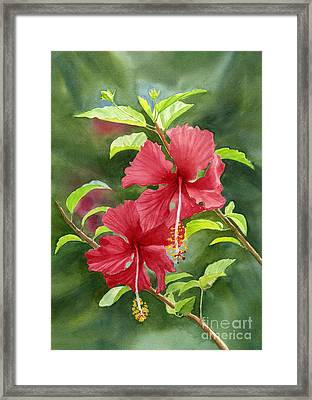 Red Hibiscus With Background Framed Print by Sharon Freeman