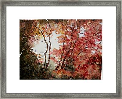 Red Hollow Framed Print