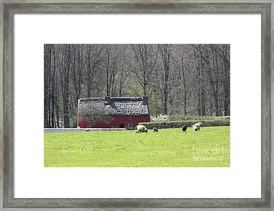 Red House Framed Print by Vicki Spindler
