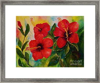 Red Hybiscus  Framed Print