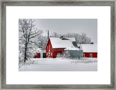 Red In White Framed Print by Larry Trupp