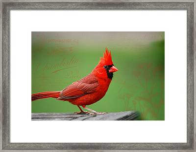 Red It Is Framed Print