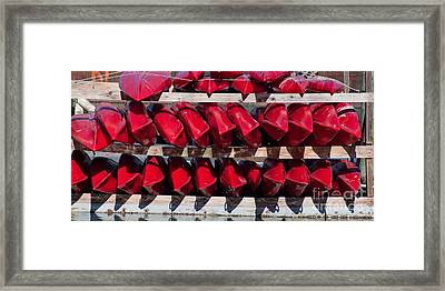 Red Kayaks Framed Print by Thomas Marchessault