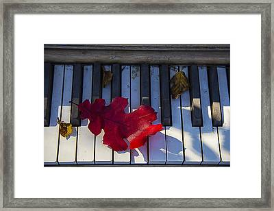 Red Leaf On Old Piano Keys Framed Print by Garry Gay