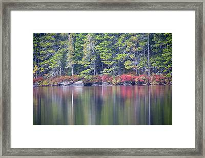 Red Leaved Shrubs Dot A Shoreline Framed Print by Robbie George