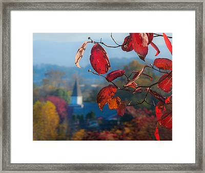 Red Leaves Blue Mountain Framed Print by Dorothy Walker