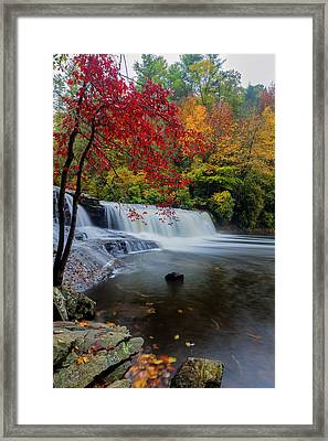 Red Leaves In Dupoint Park Hooker Falls Framed Print by Andres Leon
