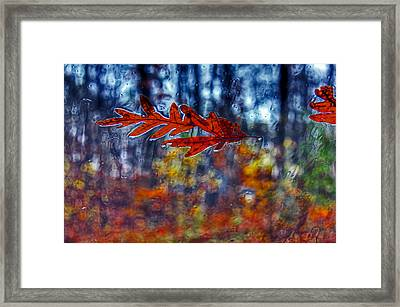 red leaves on windshield Dry Brush Framed Print