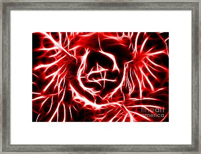 Red Lettuce Framed Print