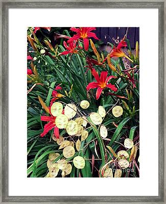 Red Lilly's Framed Print by Martha Yates
