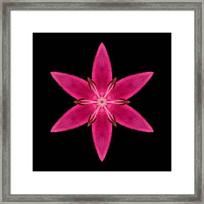 Red Lily I Flower Mandala Framed Print