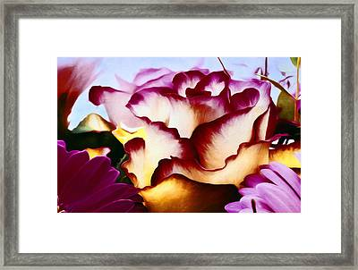 Red Lipped Petals Framed Print