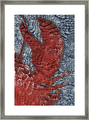 Red Lobster Framed Print by Jack Zulli