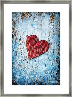Red Love Heart  Framed Print by Tim Gainey