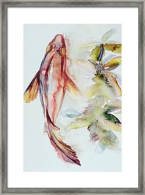 Red Mangrove Framed Print