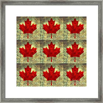 Red Maple Leaf Framed Print