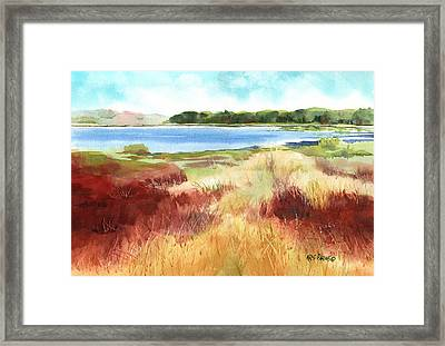 Red Marsh Framed Print by Kris Parins