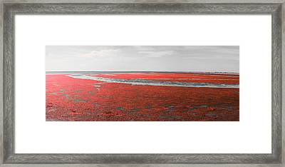 Red Marshland Framed Print